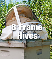 Assembled Hives