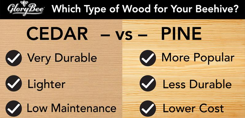 Is Cedar or Pine Right for Your Next Hive?