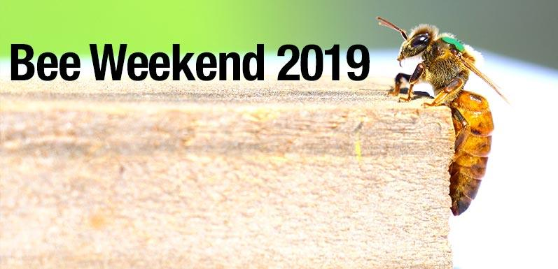 2019 Marks 45th Annual Bee Weekend at GloryBee