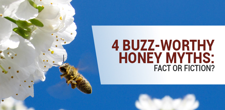 4 Buzz-Worthy Honey Myths: Fact or Fiction?