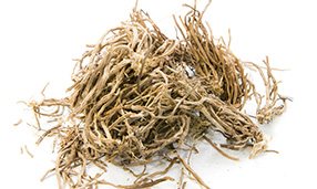 vetiver roots isolated